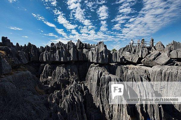 The view from above  Tsingy de Bemaraha National Park  Madagascar.
