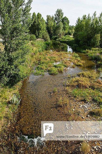 River Ucero. El Burgo de Osma. Soria province  Castile-Leon  Spain