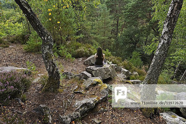 Woman sitting on a rock at Rochers d'Angennes site in the Forest of Rambouillet  Haute Vallee de Chevreuse Regional Natural Park  Yvelines department  Ile-de-France region  France  Europe.