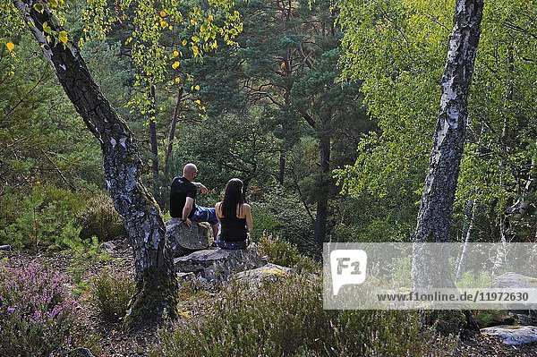 Couple sitting on a rock at Rochers d'Angennes site in the Forest of Rambouillet  Haute Vallee de Chevreuse Regional Natural Park  Yvelines department  Ile-de-France region  France  Europe.