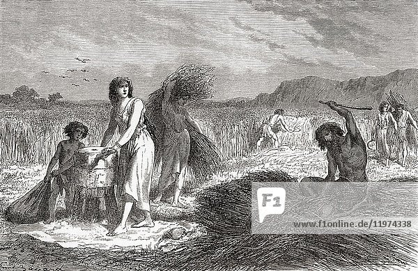 Agriculture during the Iron Age. From L'Homme Primitif  published 1870.