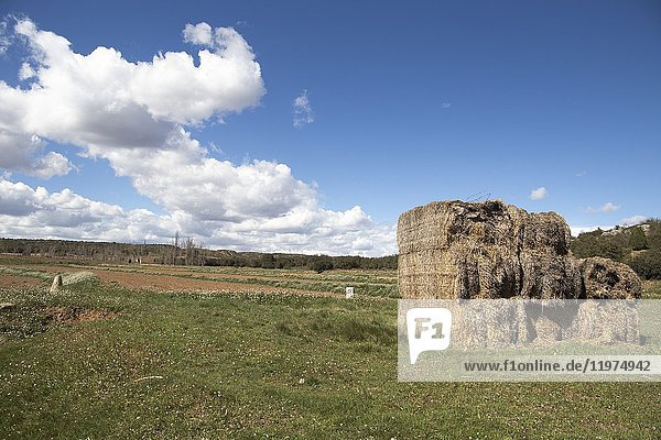 Spring landscape in Gudar mountains Teruel Aragon Spain.