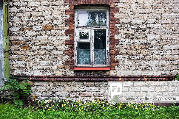 Traditional house with flowers in Tallinn  Estonia  Europe.