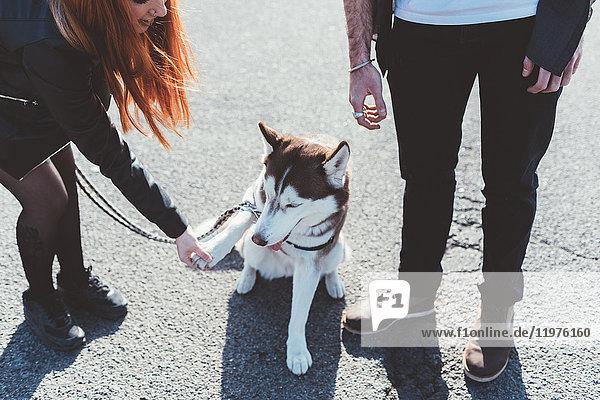 Schrägansicht eines Paares mit Hund