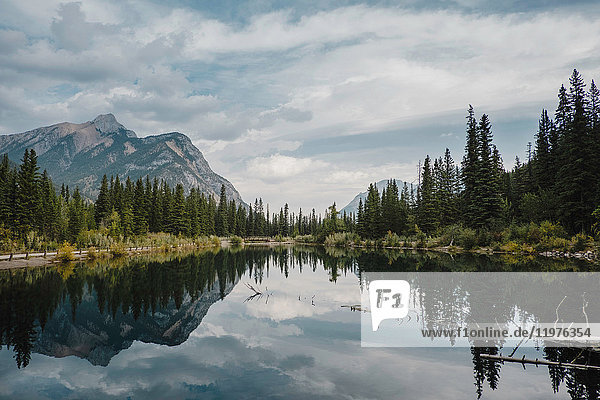Reflection of mountain and trees in lake  Canmore  Canada  North America