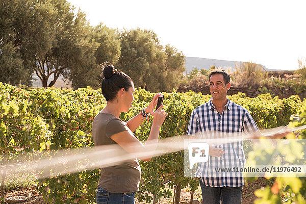 Reife Frau fotografiert Winzerin im Weinberg  Las Palmas  Gran Canaria  Spanien