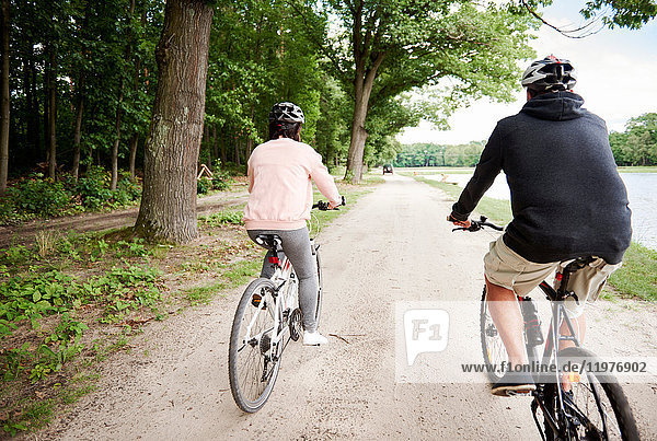 Mature couple cycling along path  rear view