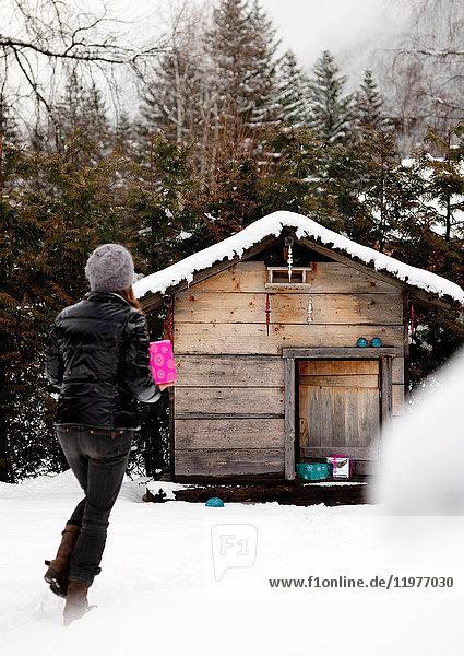 Frau hält Geschenk  geht auf eine Holzhütte in ländlicher Umgebung zu  Rückansicht