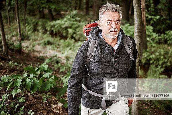 Senior man hiking through forest