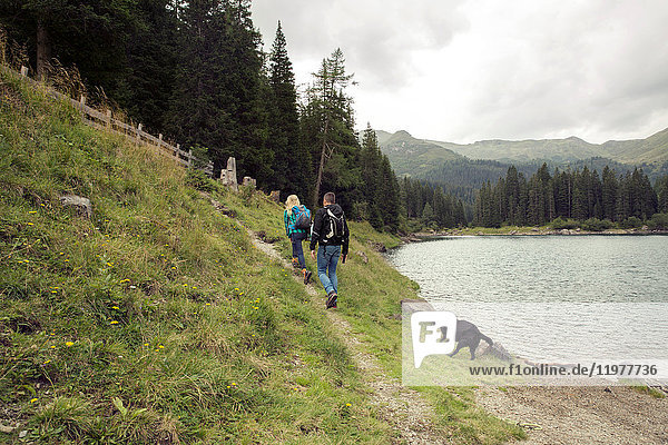 Couple with dog hiking by lake  Tirol  Steiermark  Austria  Europe