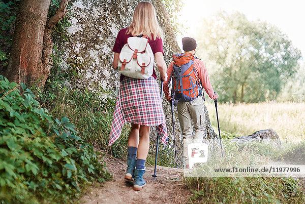 Rückansicht eines Paares mit Wanderstöcken beim Wandern im Wald  Krakau  Malopolskie  Polen  Europa