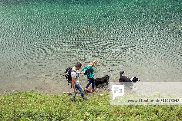 Couple with dogs hiking by lake  Tirol  Steiermark  Austria  Europe
