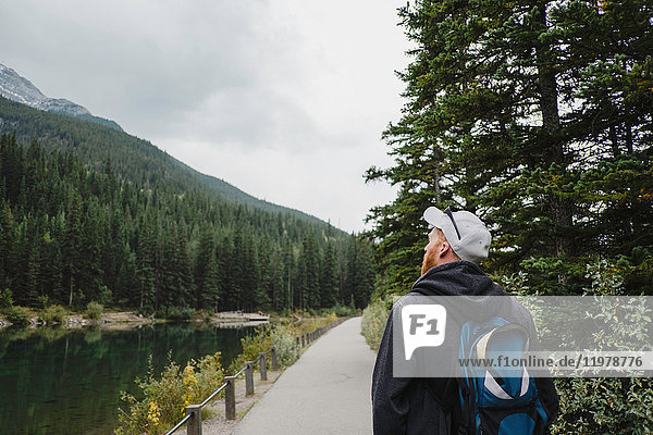 Man looking away at mountain and trees  Canmore  Canada  North America