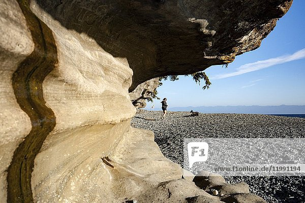 Sandstone cliffs on Sandcut Beach - Jordan River Regional Park - near Sooke  Vancouver Island  British Columbia  Canada.