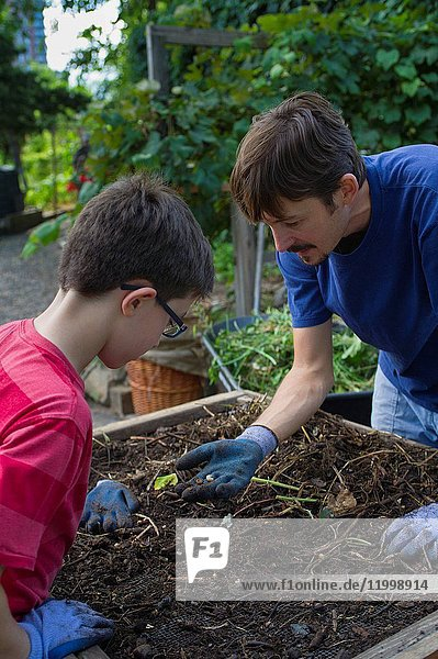 Guys Sifting Soil In Community Garden
