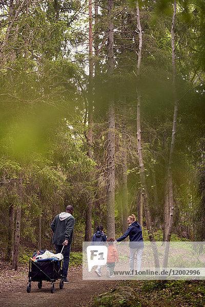 Rückansicht des Mannes  der beim Wandern mit der Familie inmitten von Bäumen im Wald einen Campingwagen zieht.