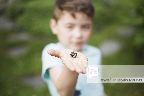 Junge zeigt Schnecke auf Palme im Hinterhof
