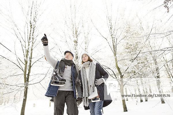 Seniorenpaar mit Schlittschuhen im Winterwald