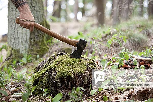 Hand haltende Axt am Baumstumpf im Wald