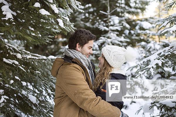 Glückliches junges Paar von Angesicht zu Angesicht im schneebedeckten Winterwald