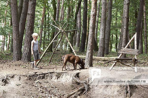 Spaziergang mit Hund im Wald