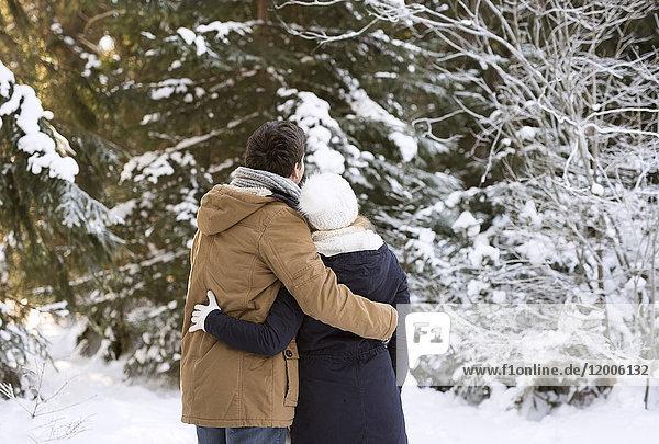Rückansicht des glücklichen jungen Paares Arm in Arm im verschneiten Winterwald