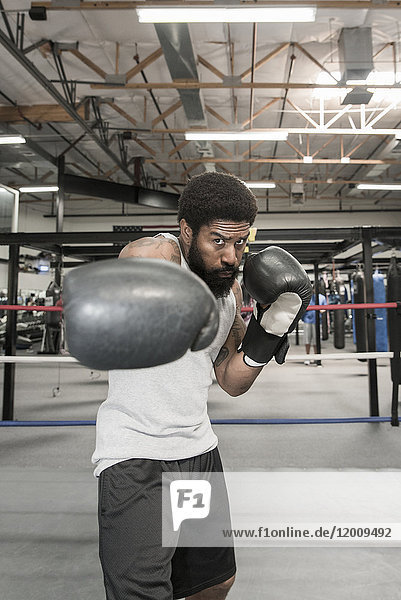 Black man posing in boxing ring