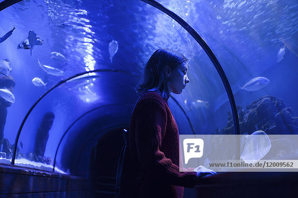 Caucasian woman admiring fish in aquarium