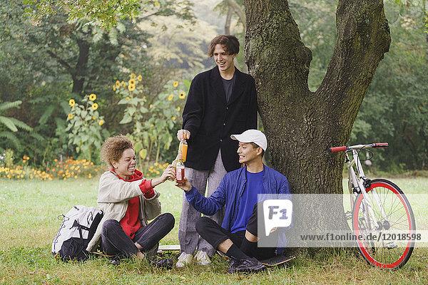 Fröhliche Freunde beim Trinken unter dem Baum auf der Wiese im Park