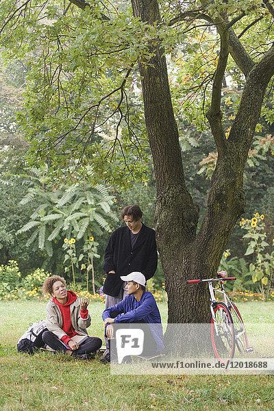 Freunde beim Reden unterm Baum auf dem Wiesenfeld im Park