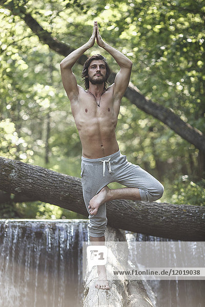 Junger Mann im Baum stehend posiert auf einem Baumstamm gegen den Wasserfall im Wald.