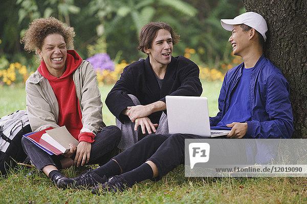 Fröhliche Freunde  die sich unter einem Baum auf einer Wiese im Park entspannen.