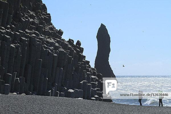 Iceland  Vik  Dyrholaey beach ReynisfjallDyrholaey.