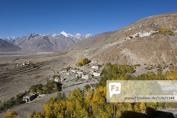 Village of Karcha in the autumn  Zanskar  Ladakh  India