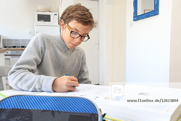 France  teenager working his lessons at home.