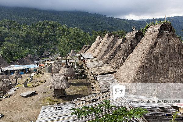 Traditional bamboo houses  Bena Bajawa  Flores  Indonesia