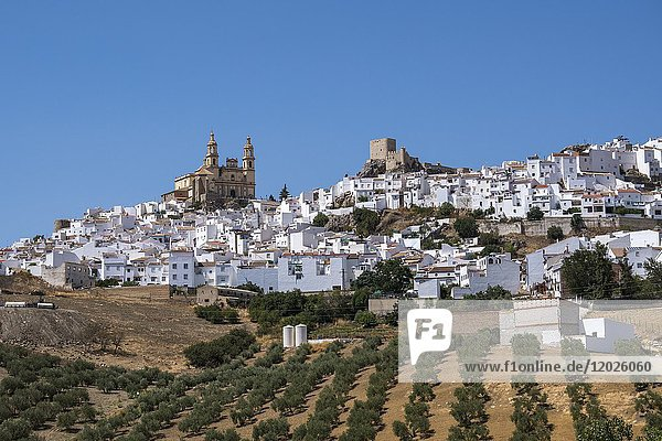Olvera  one of white towns of Andalusia  Spain.