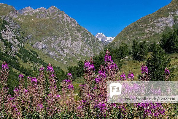 Valley of breuil  val of aoste  italy