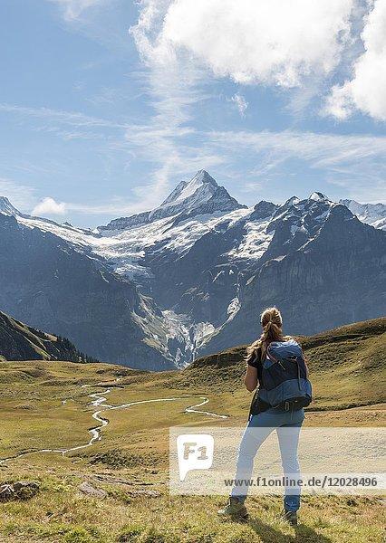 Wanderin Blickt in die Ferne  Fluss meandert  Großes Fiescherhorn  Eiger  Mönch  Jungfrau  Grindelwald  Bern  Schweiz  Europa