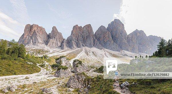 Wanderin auf Wanderweg zur Geisleralm im Villnösstal unterhalb der Geislerspitzen  hinten die Geislergruppe  Sass Rigais  Dolomiten  Südtirol  Italien  Europa