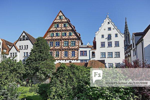 Fachwerkhaus  Fischerviertel  Ulm  Baden-Württemberg  Deutschland  Europa