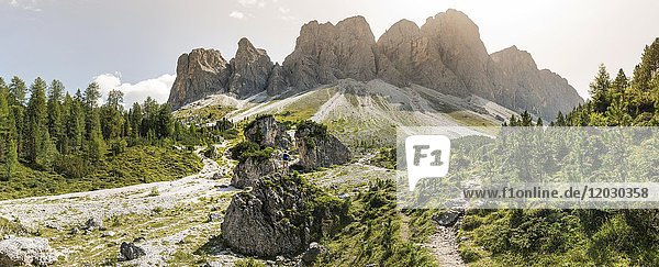 Wanderweg zur Geisleralm im Villnösstal unterhalb der Geislerspitzen  hinten die Geislergruppe  Sass Rigais  Dolomiten  Südtirol  Italien  Europa