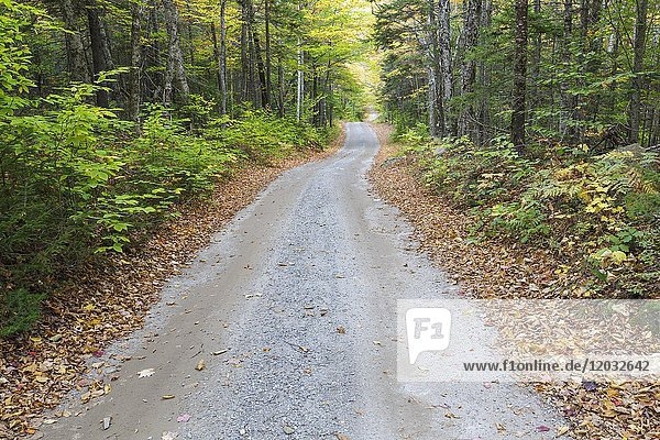 The Sandwich Notch Road in Sandwich  New Hampshire during the autumn months. This historic road was established in 1801.