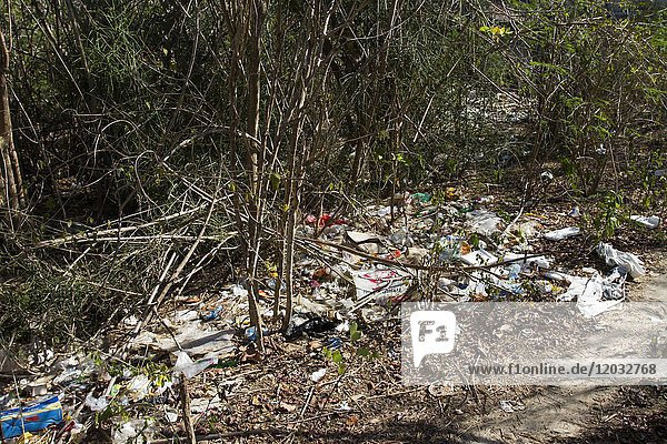 Garbage washed by the sea in bushes  environmental pollution  Nusa Lembongan  Small Sunda Islands  Indonesia  Asia