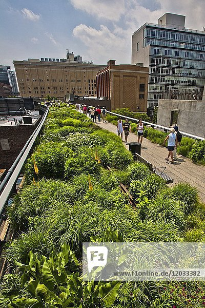 High Line Elevated Park  Meat Packing District  West Side  Manhattan  New York City  New York  USA.
