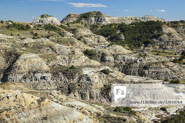 Badlands from Boicourt Trail  Theodore Roosevelt National Park-South Unit  North Dakota.