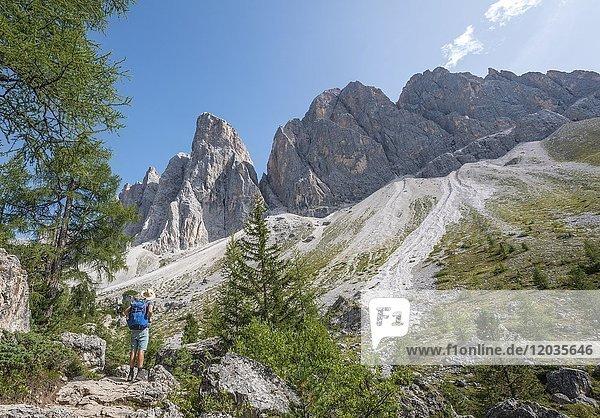 Wanderer auf dem Wanderweg zur Geisler Alm  unterhalb der Geislerspitzen  hinten Geislergruppe  Villnösstal  Sass Rigais  Dolomiten  Südtirol  Italien  Europa