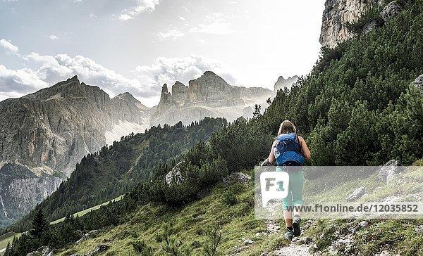 Wanderin auf dem Weg zum Grödner Joch  Passo Gardena  Naturpark Puez-Geisler  Dolomiten  Selva di Val Gardena  Südtirol  Trentino-Alto Adige  Italien  Europa