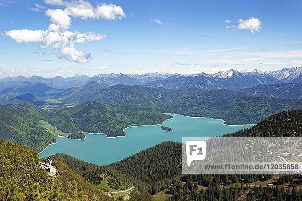 Ausblick vom Heimgarten auf den Walchensee  Tölzer Land  Oberbayern  Bayern  Deutschland  Europa