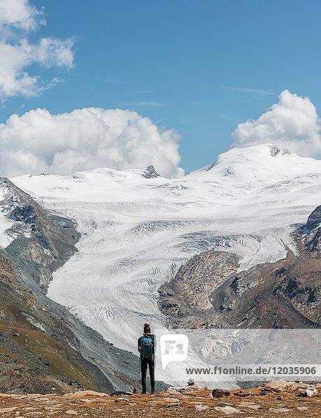 Wanderin  Gletscherzunge  Blick vom Unterrothorn auf den Findelgletscher  Zermatt  Valais  Schweiz  Europa